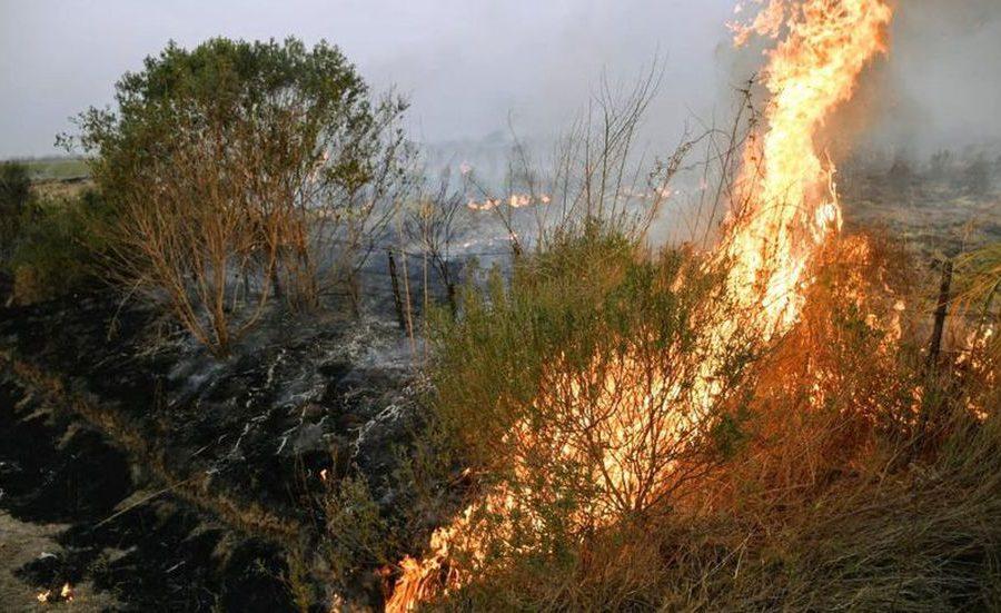 Por los incendios en Santa Fe, la Rural de Reconquista emitió un duro comunicado