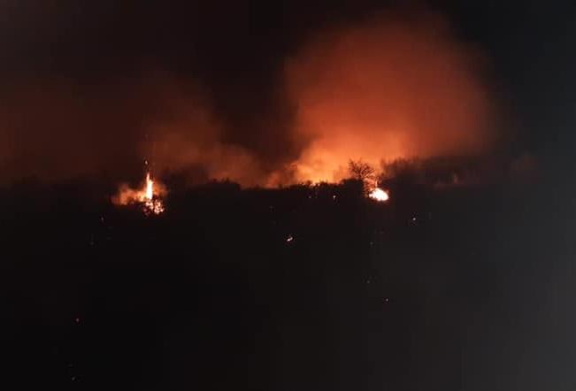 Bomberos sofocaron incendio de pastizales y monte nativo